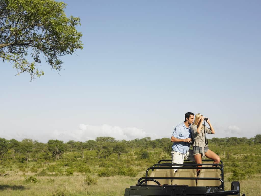 safari best viewing binoculars