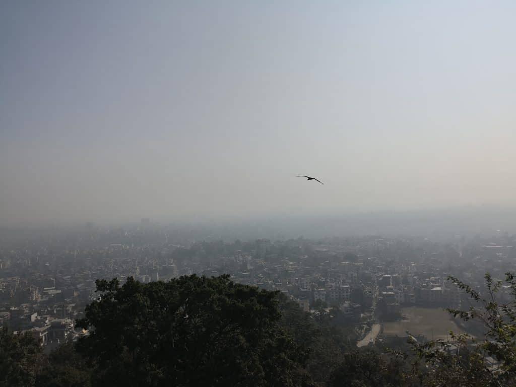 Nepal Day #2 - Kathmandu 5