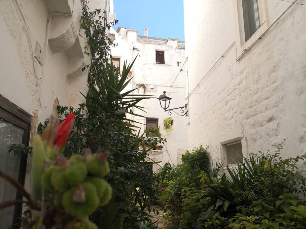 Puglia, Italy - Pasta, Pizza, Wine, Sourdough Bread & More Wine 36